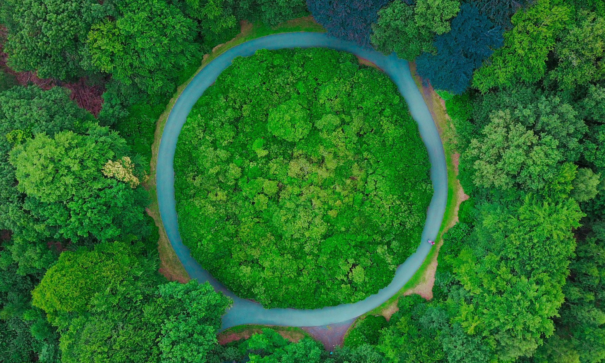 Kreisförmige Strasse in einem Waldstück aus Vogelperspektive